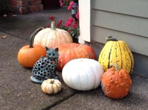 My Pumpkin Collection