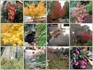 Mosaic Monday - November 7