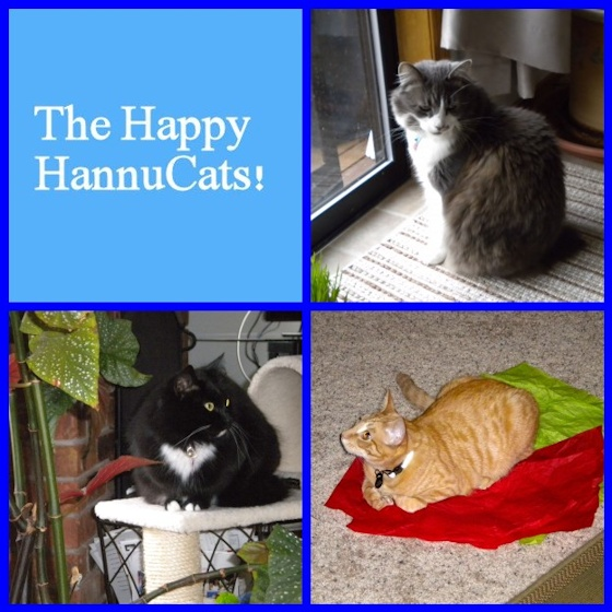 The Happy HannuCats - Mosaic Monday