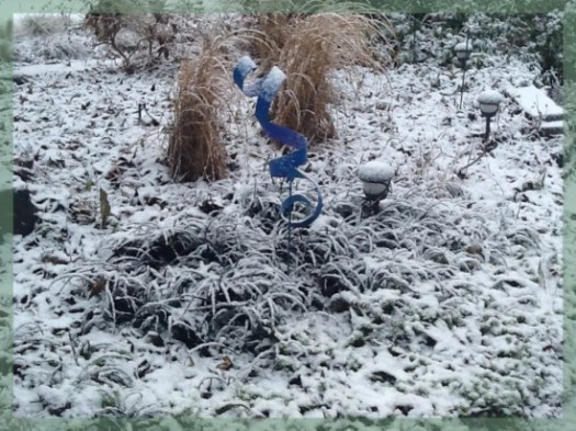Black Mondo Grass And Miscanthus In Snow