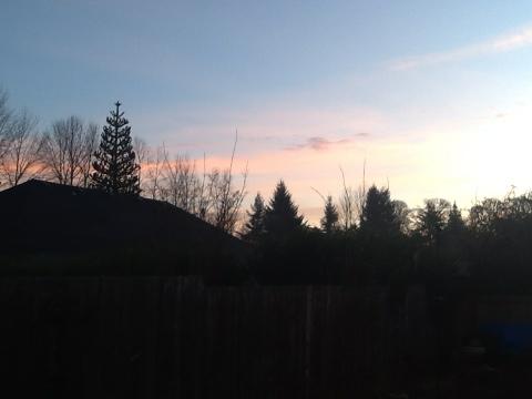 Groundhogs Day Sunrise