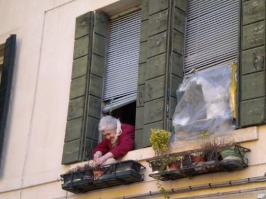 Woman Tending Window Herb Pots
