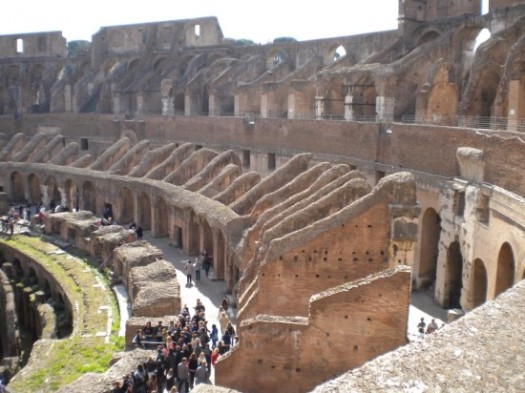 Grasses In Floor Of Roman Colliseum
